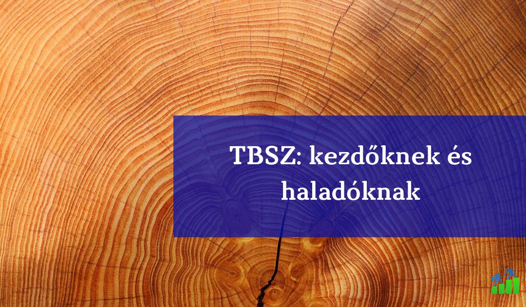 Mit rontanak el a pénzügyi portálok a TBSZ-szel kapcsolatban?