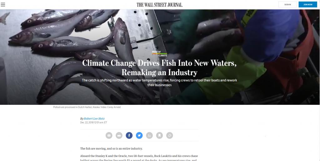 globális felmelegedés Pénzügyi Fitnesz
