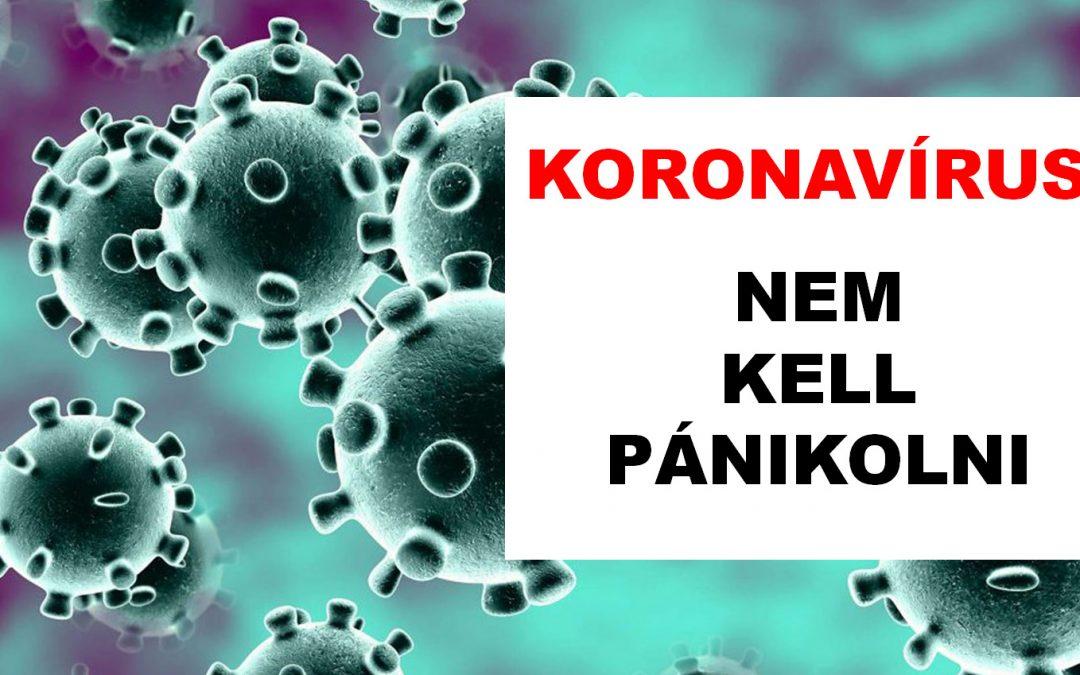 Amit a koronavírusról most érdemes tudnod